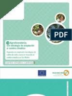 Café en agroforestería y adaptación al cambio climático