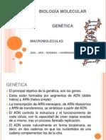 1ra. Clase Biología Molecular