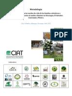 Vulnerabilidad Familias Cafeteras CentroAmerica CIAT