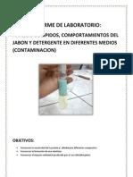 Laboratorio de Detergente