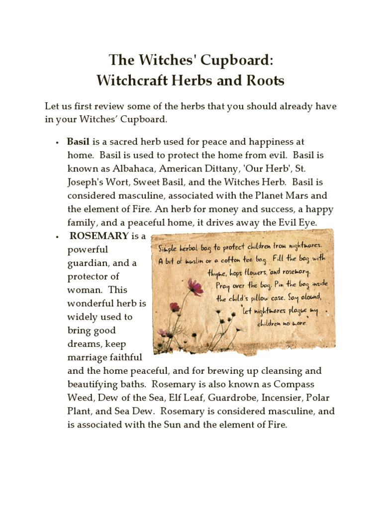 Witch Herbs | Witchcraft | Basil