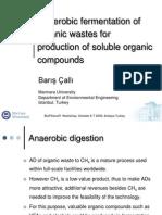 Anaerobic Fermantation Organic Wastes Biopxenor