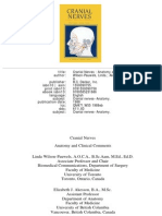 Cranial Nerves In Health And Disease Pdf