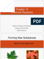 chapter 14 chemical raection