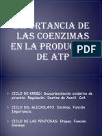 Presentacion Biologia Mitocondria.pptx [Reparado]