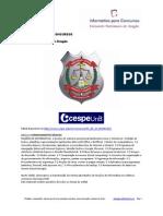 Informática de Concursos - Polícia Civil DF Escrivão 2013 www.informaticadeconcursos.com.br