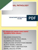 Renal Pathology, Copy