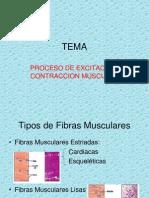 Proceso de Contracción Muscular (1)
