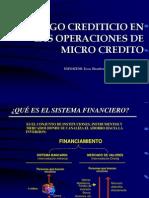 Riesgos en Las Institucions de Micro Finanzas 1 [1]