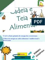 2012_-_cadeia_e_teia_alimentar