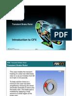 CFX Intro 12.0 WS8 Brake Rotor