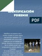 identificacin-1216678315576921-8