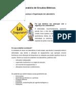 Segurança e Organização do Laboratório