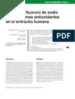 ANTIOXIDANTES - HMATIE
