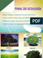EXPOSICION ECOLOGIA (1)