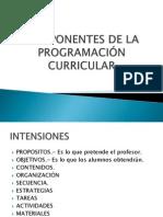 COMPONENTES DE LA PROGRAMACIÓN CURRICULAR