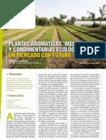 Revista Ae9 Prod Vegetal Plantas Aromaticas Vdef