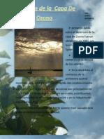 Desgaste de La Capa de Ozono (Paola Tocte)