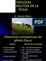 Fisiologia Reproductiva de La Yegua