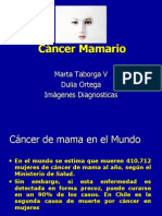 Cancer Mamario Presentacion1
