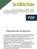 Producción porcinos 2010 IMPRIMIR
