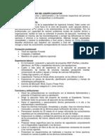 Perfiles y Funciones Del Equipo Ejecutor