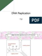 DNA Replication 7.2