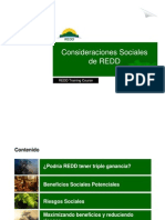 S. Panfil - Consideraciones Sociales de REDD