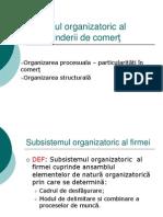 5 Subsistemul organizatoric