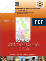 SEPARATA N° 01