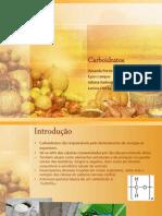 Carboidratos [Salvo Automaticamente]