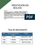 deforestación 75_92_00