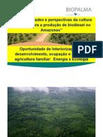 6 Embrapa Potencialidades e Perspectivas Da Cultura Do Dende Para a Producao de Biodiesel No Am