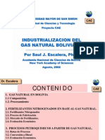 Industrializacion Del Gas Natural Boliviano 082002