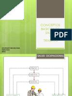 Conceptos Basicos Salud y W