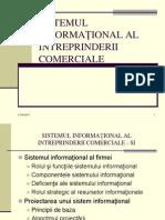 6 Sistemul Informational