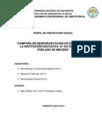Perfil de Proyeccion Social Despsrasitacion .Docx2013-I (1) 01.05.13