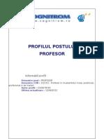 Fisa Post Profesor
