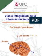 Clase Neuro Sentidos