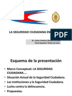 1-3laseguridadciudadanaenelper-101109093052-phpapp02