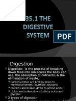 35.1 - The Digestive System