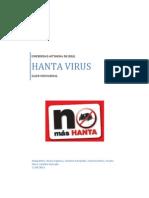 Hanta Virus.docx