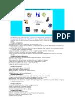 Actividades para desarrollar y evaluar las inteligencias múltiples en el aula