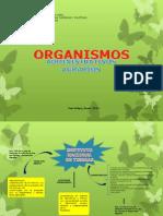 Organismos Administrativos Agrarios (Mapa)