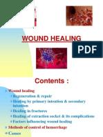 Smnr - 4... Wound Healing