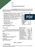 Guía clase 2.pdf