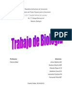 Algas y Protozoarios