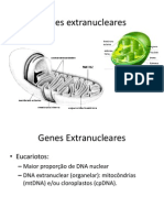 Genes Extranucleares