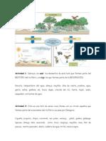 Actividades en torno al ecosistema río Ebro - IES María Moliner