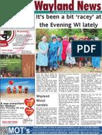 The Wayland News July 2013
